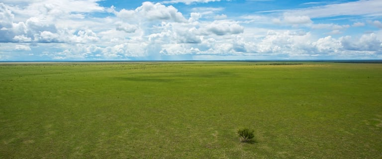 Rural / Farming commercial property for sale at 15055 Buntine Hwy Katherine NT 0850