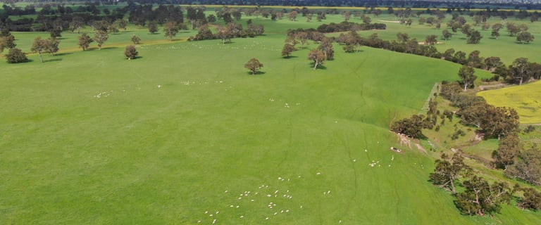 Rural / Farming commercial property for sale at 4580 Coleraine-Edenhope Road Harrow VIC 3317