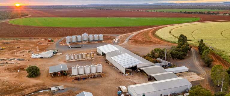 Other commercial property for sale at Lachlan River Road Hillston NSW 2675