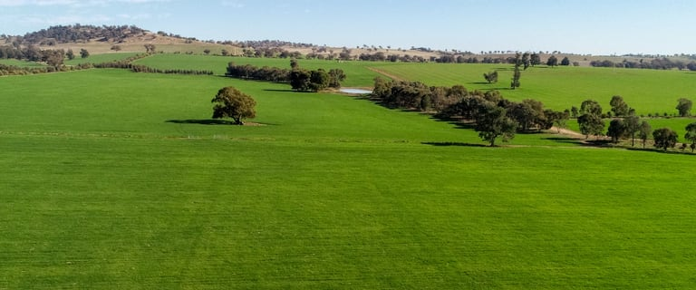 Rural / Farming commercial property for sale at 226 Cloughs Road Wagga Wagga NSW 2650