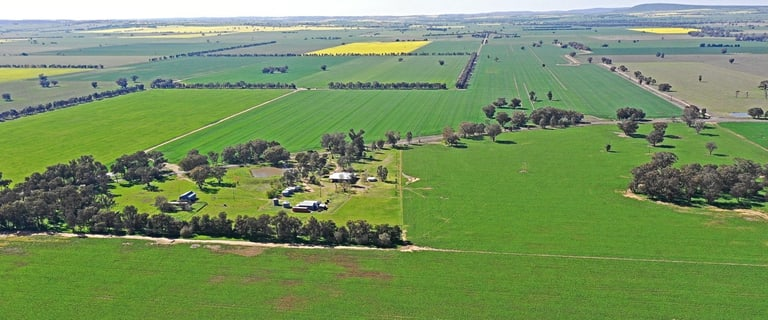 Rural / Farming commercial property for sale at 954 Gerrybang Road Young NSW 2594