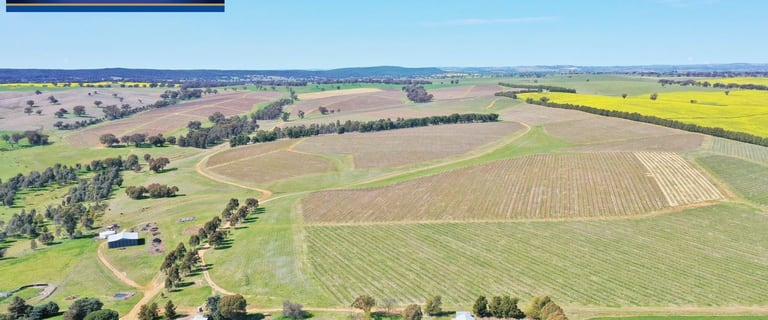 Rural / Farming commercial property for sale at 1598 Barwang Road Young NSW 2594