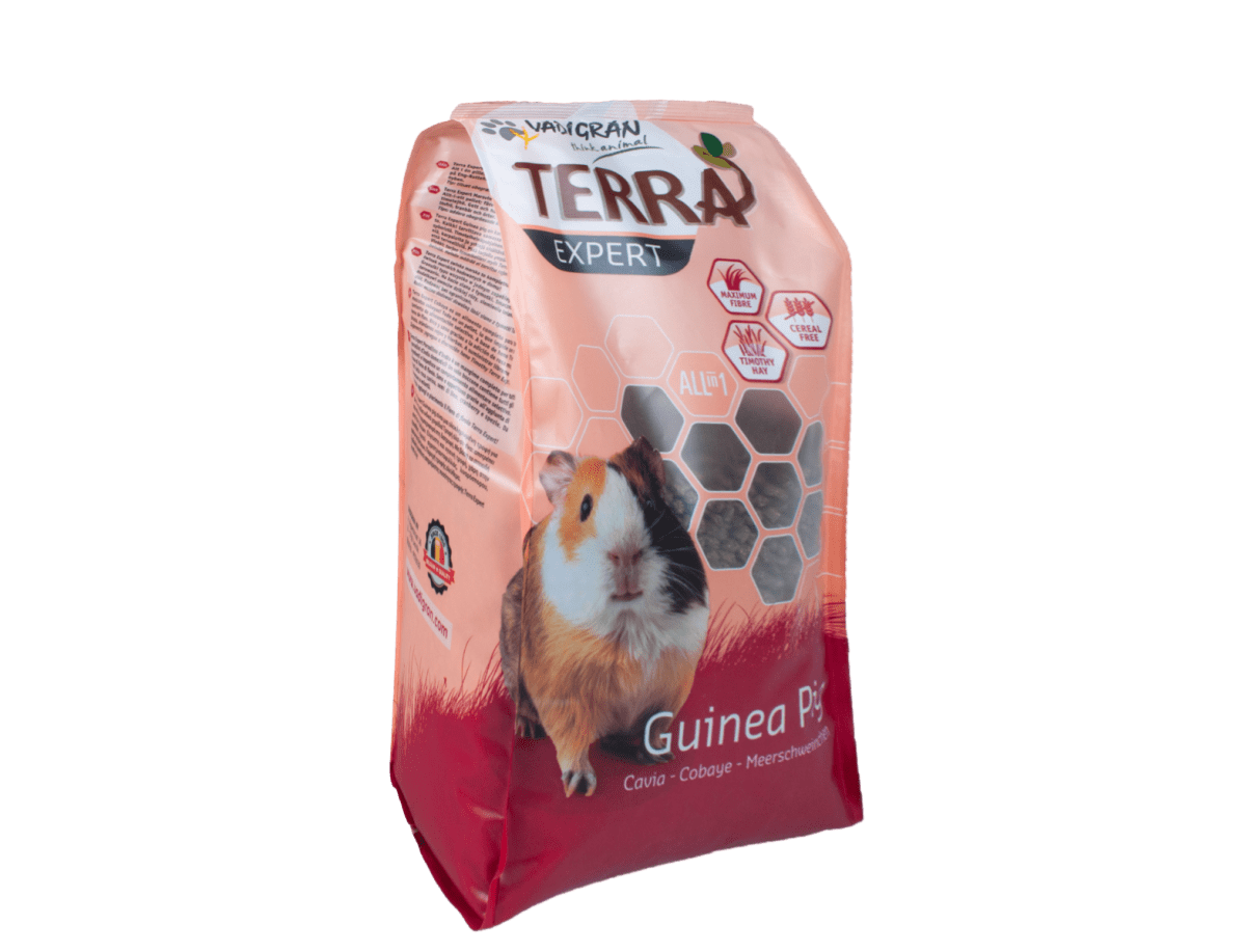 TERRA EXPERT Timothy guinea pig