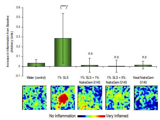 Croda NatraGem S140 Efficacy Studies - 3