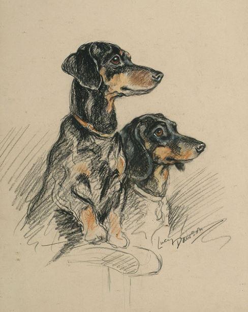 "Lucy Dawson Prints, ""Two Dachshunds"""
