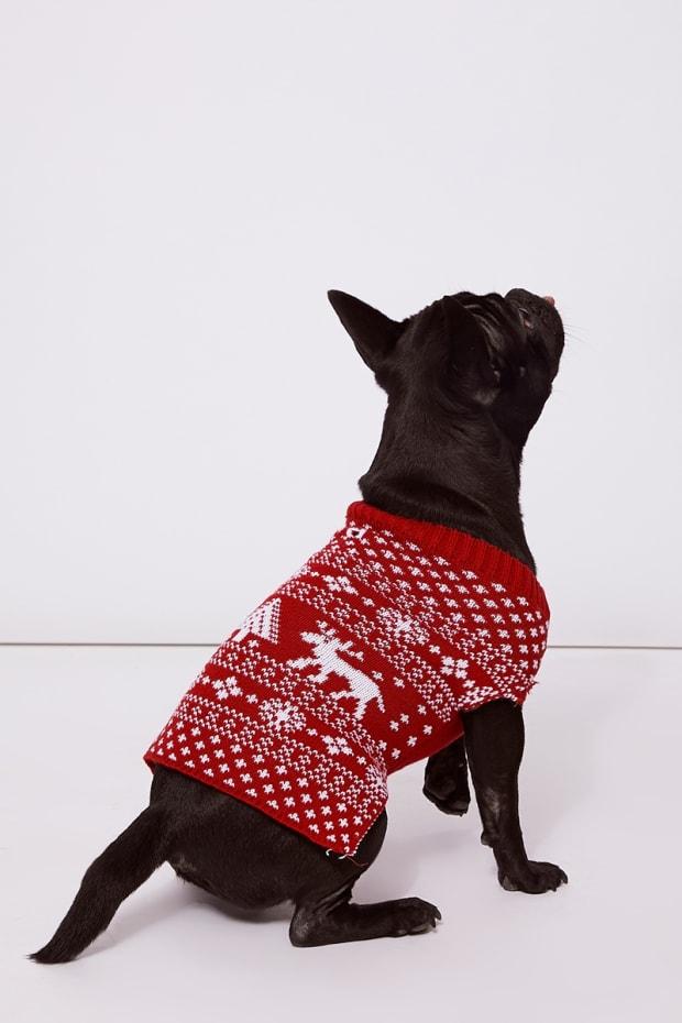 FAIRISLE RED CHRISTMAS DOG JUMPER