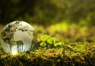 Nachhaltige praxisst5t5s