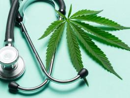 20211001 medizinisches cannabis alles was sie wissen muessenzaod4r