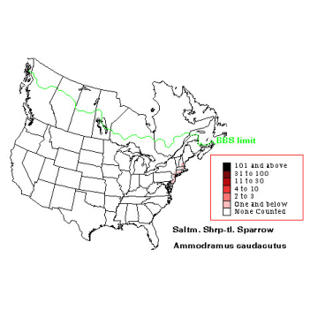 Saltmarsh Sharp-tailed Sparrow distribution map