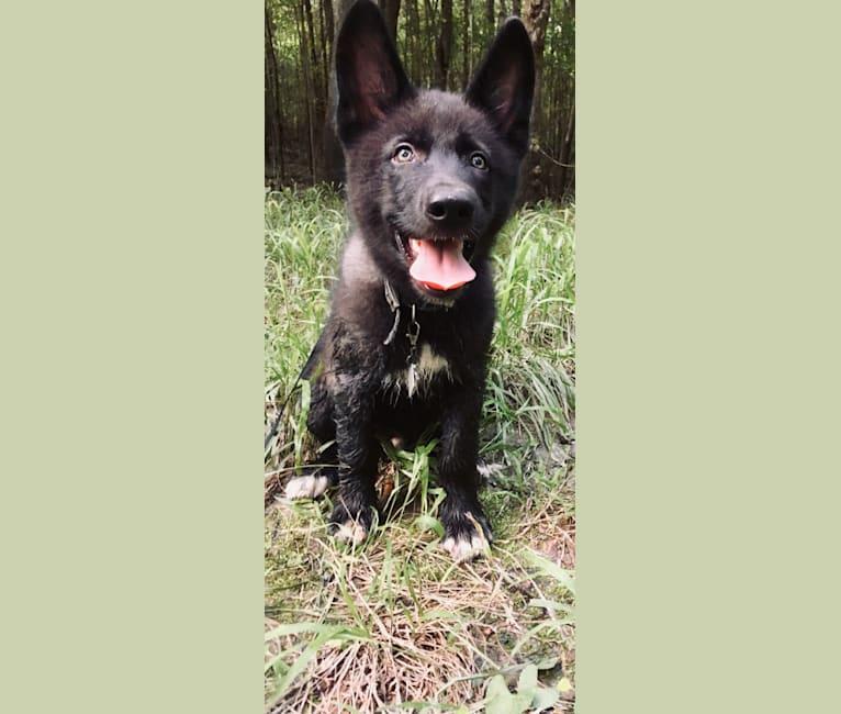 Photo of Xenan, a