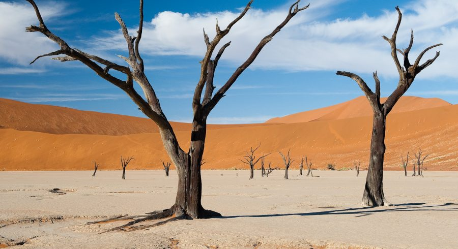 Enchanting Travels - Namibia Tours - Sossusvlei - Little Kulala - Desert