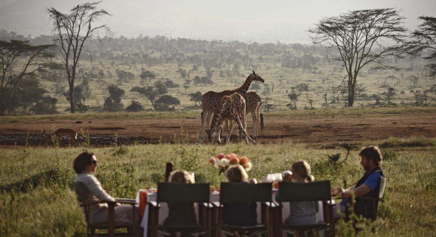 Sundowner in the wild, Kenya