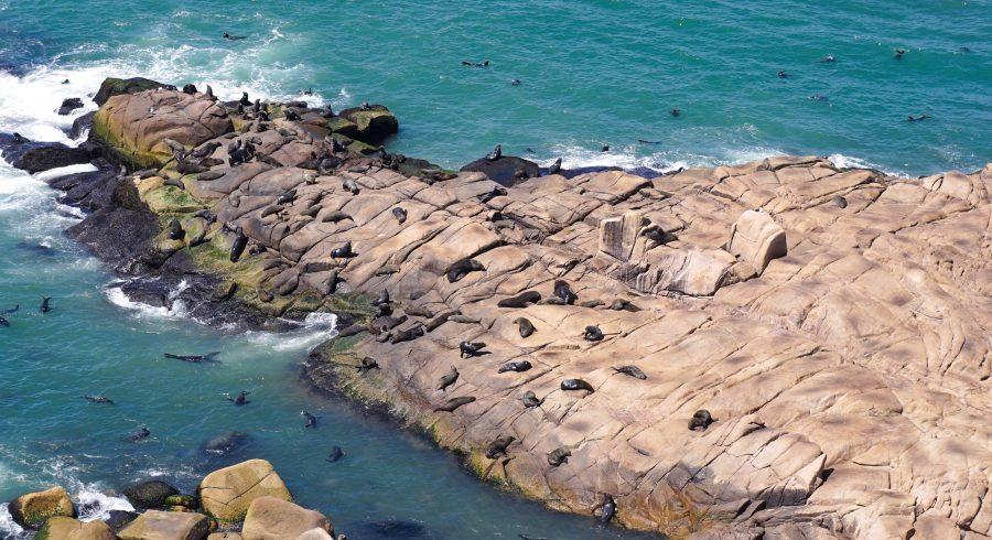 Cabo Polonio in Uruguay, South America