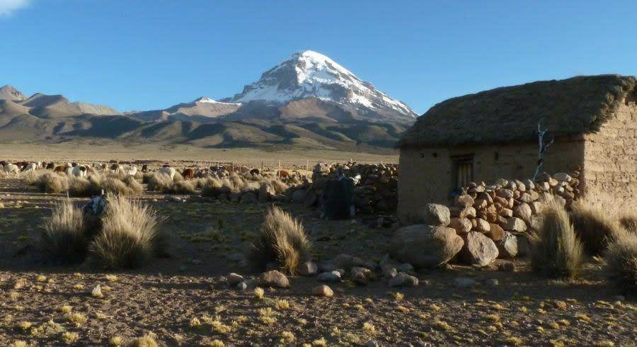 Enchanting Travels Bolivia Tours Sajama