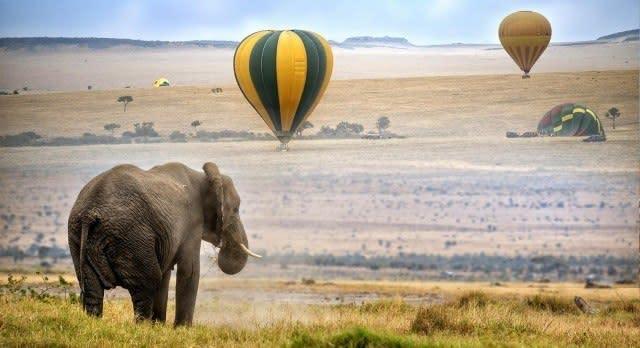 Ballonfahrt über die Masai Mara