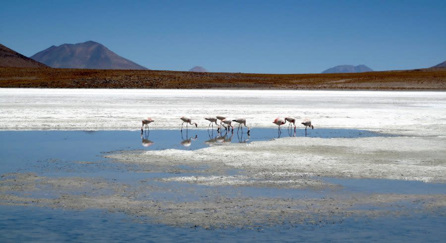 Salzpfanne in Salar de Uyuni, Bolivien