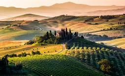 Tuscany, panoramic landscape - Italy