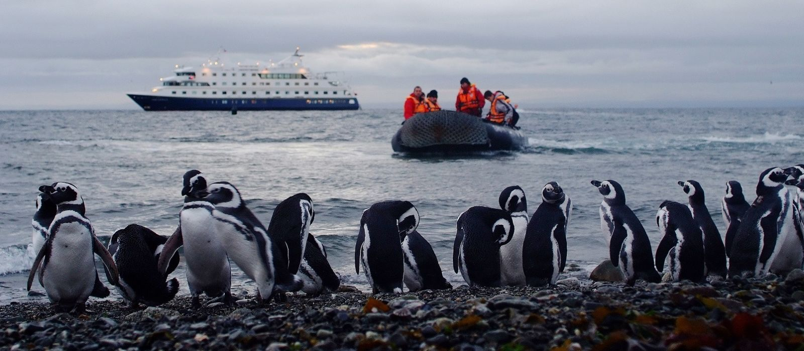 Argentina: South Patagonia Tour Trip 3