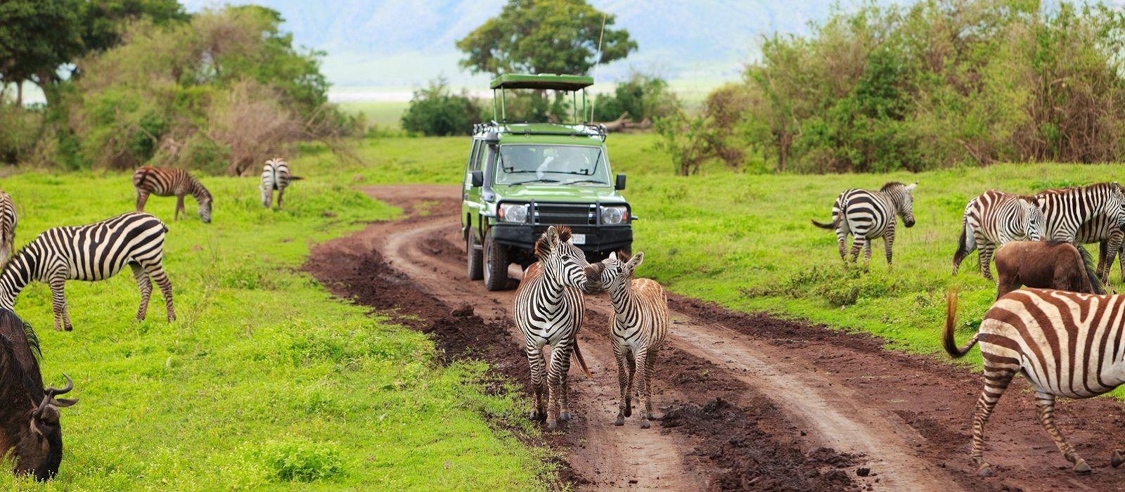 Die Höhepunkte von Kenia und Tansania Urlaub 3
