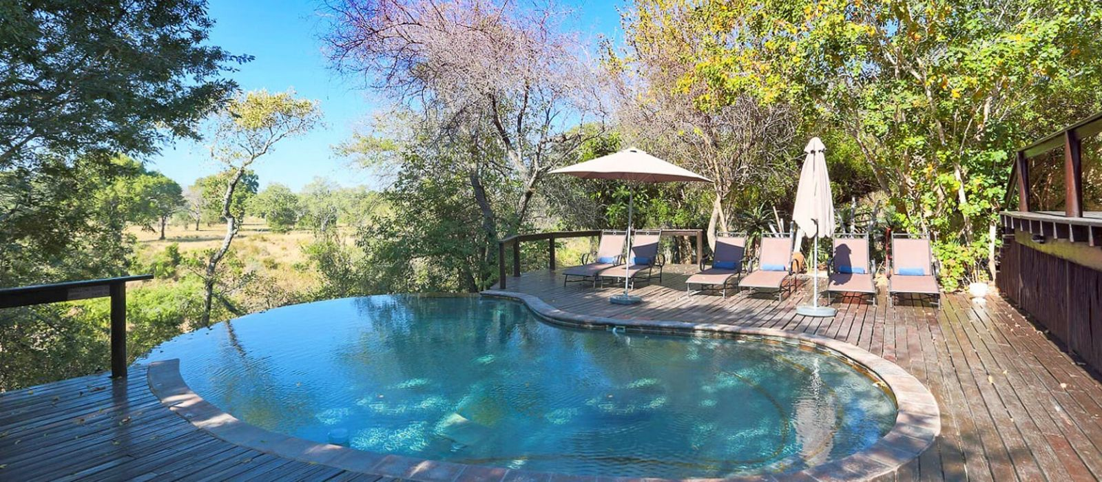 Hotel Elephant Plains Game Lodge South Africa