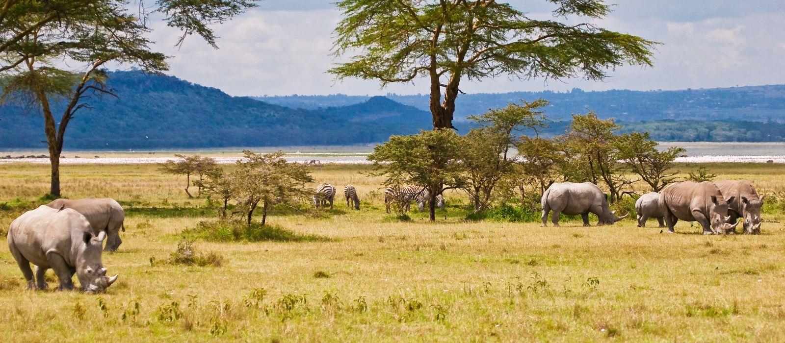 Destination Lake Baringo Kenya