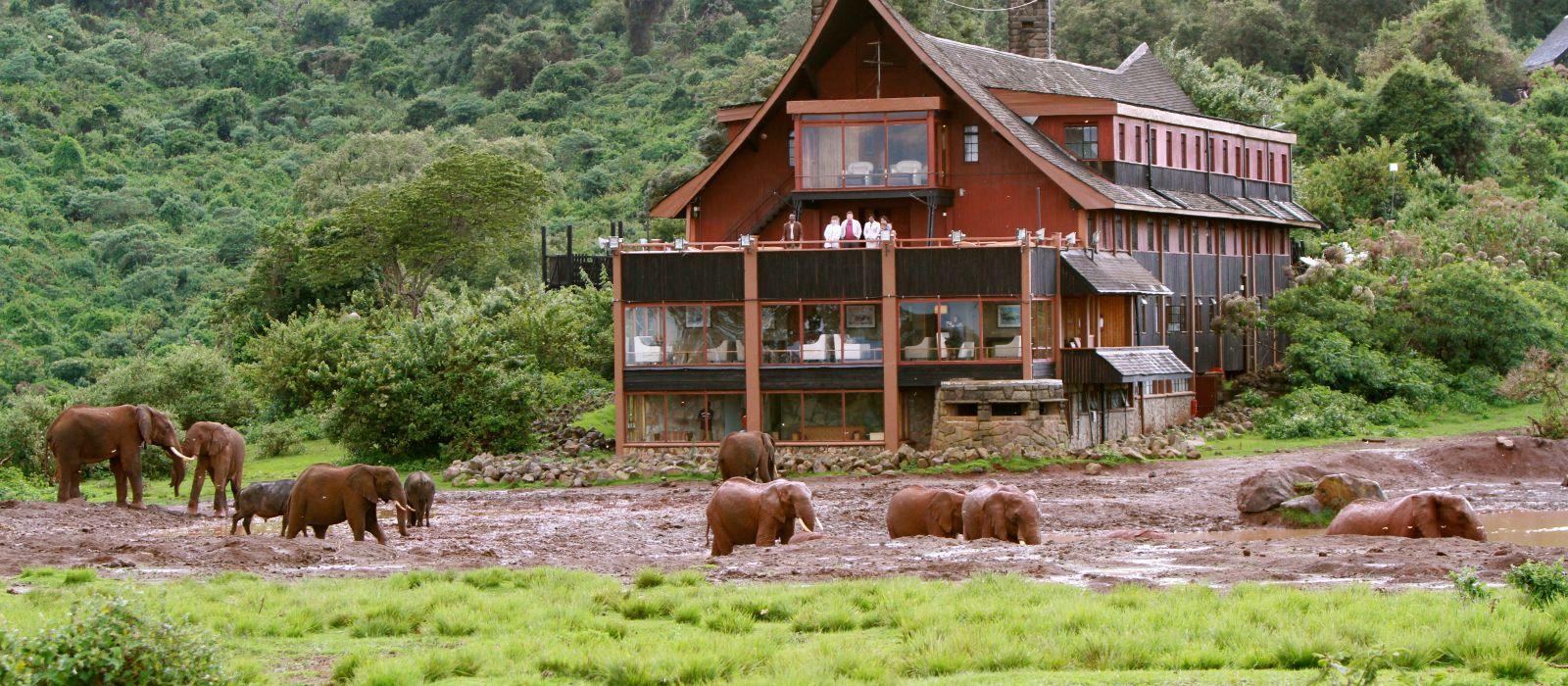 Hotel The Ark Kenia