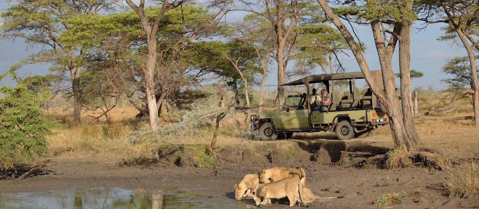 Hotel Ubuntu Camp W Tanzania