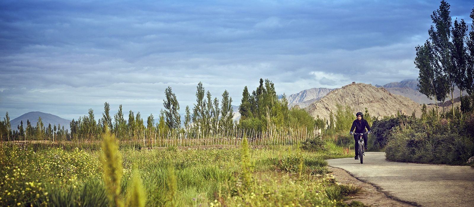 Destination Nubra Valley Himalayas
