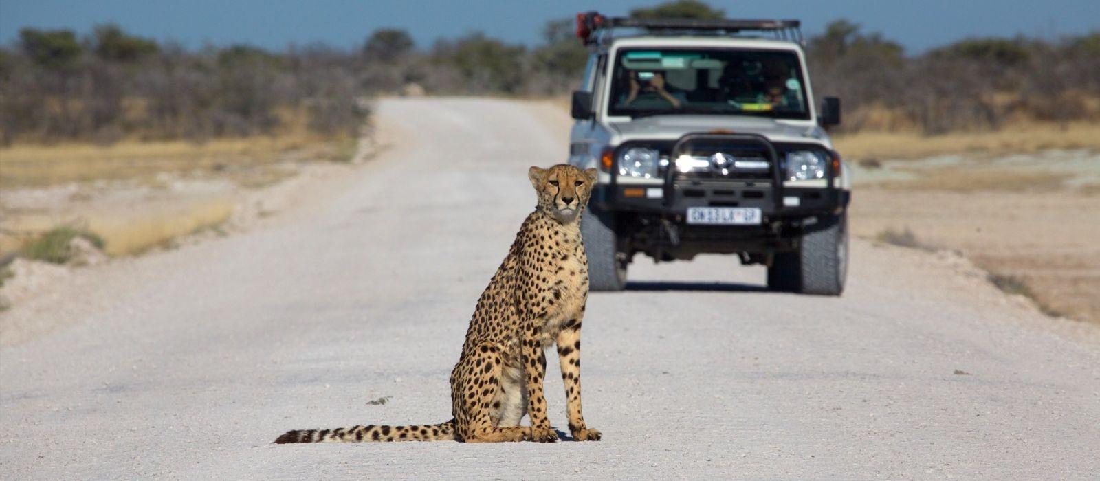 Destination Outjo Namibia