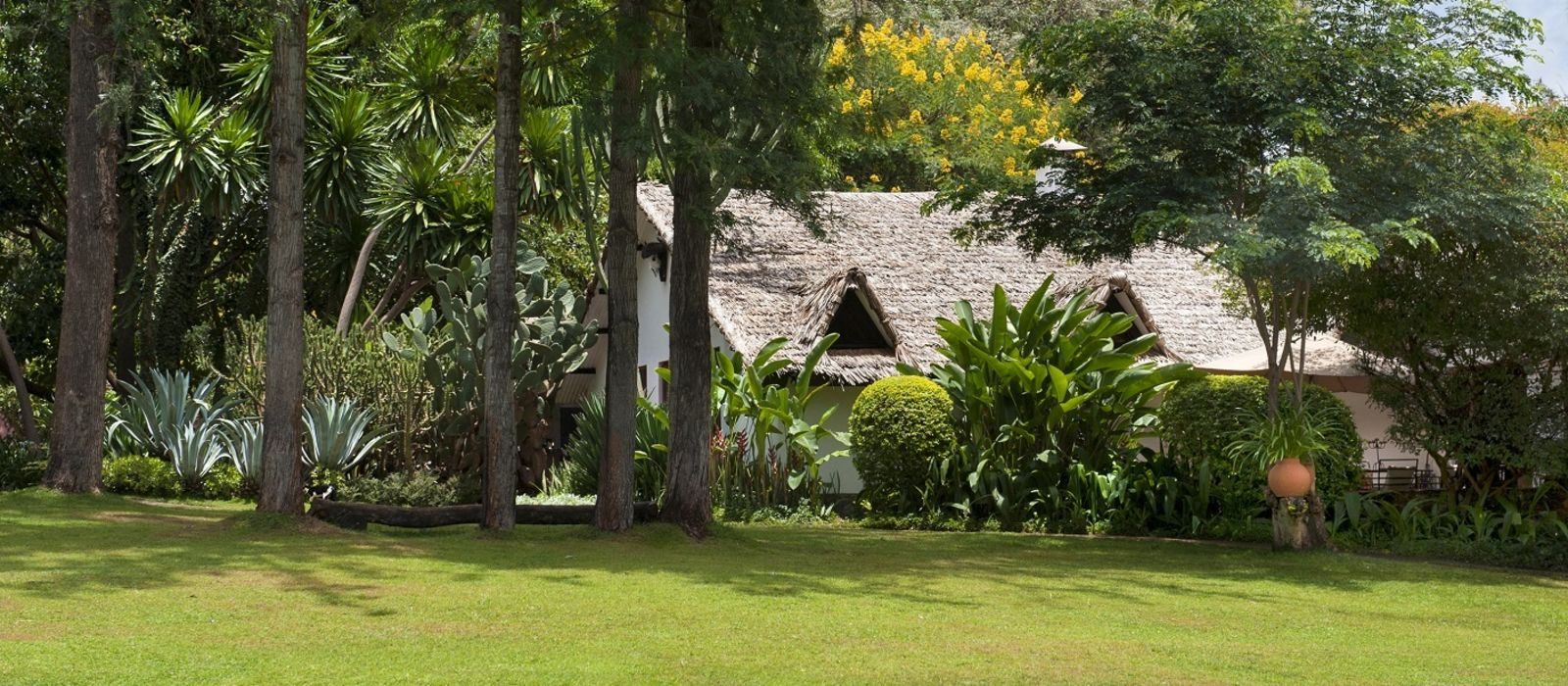 Hotel Plantation Lodge Tanzania
