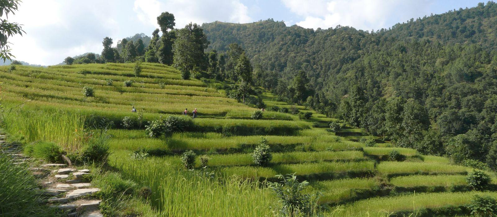 Hotel Trekking in Pokhara Nepal