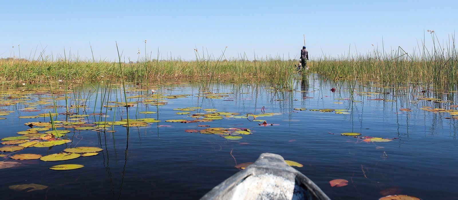Botswana and Zambia: Luxury Safari and Victoria Falls Tour Trip 5