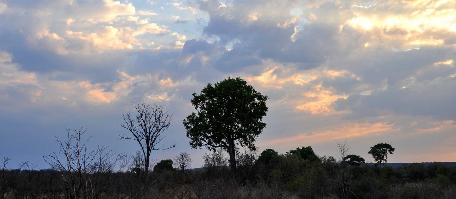 Klassische Safari Reise: Simbabwe & Botswana Urlaub 2