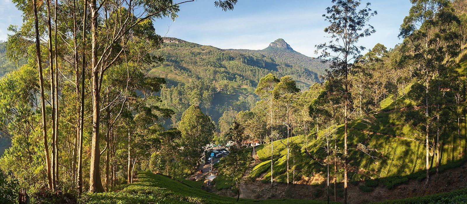 Reiseziel Adam's Peak Sri Lanka