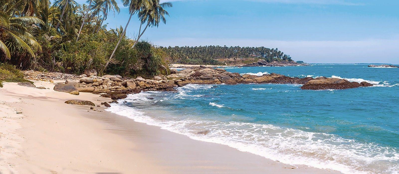 Sri Lanka Last Minute Angebot: Kultur, Natur und Strände Urlaub 6