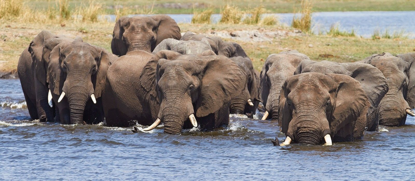 Victoria Falls and Botswana Highlights Tour Trip 1