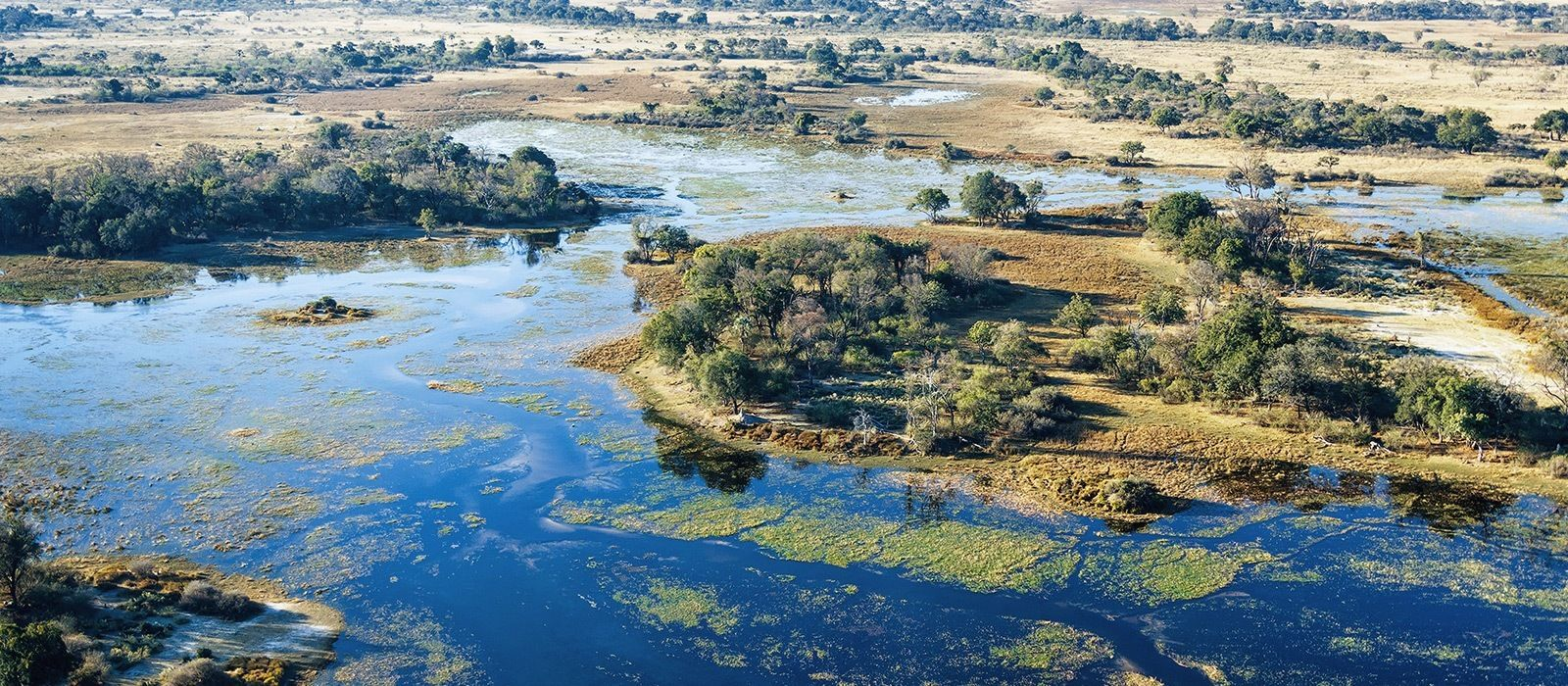 Tanzania and Botswana Safari Highlights Tour Trip 2