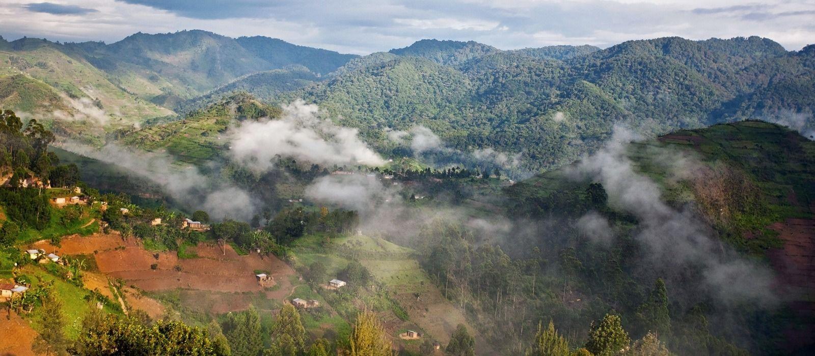 Uganda Safarireise – Primaten und wilde Landschaften Urlaub 2
