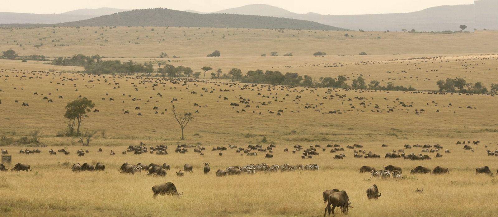 Kenia Reisen & Rundreisen