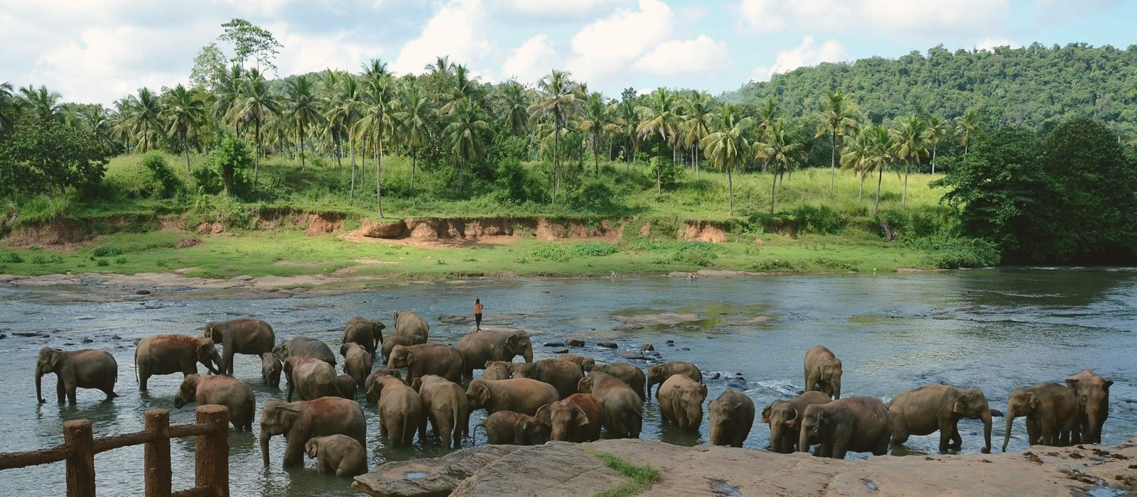 Travel Destination Sri Lanka 1