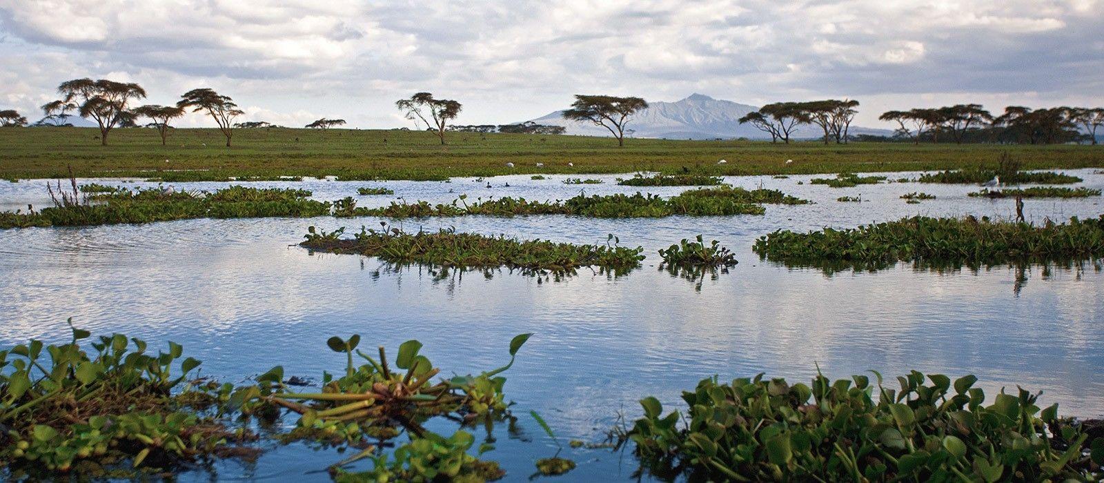 Kenia: Wandersafari Rundreise Urlaub 6