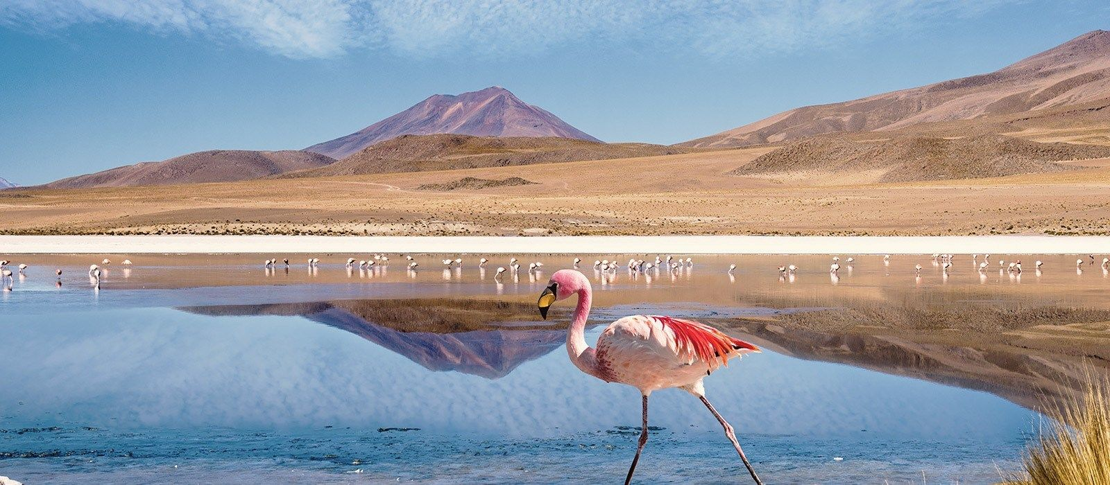 Bolivien: Farben und Geschichte Urlaub 6