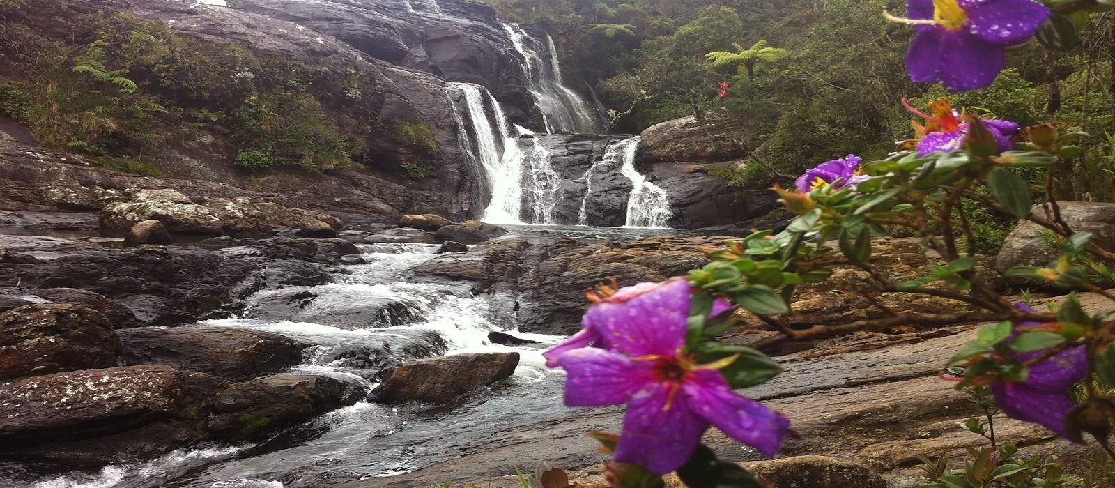 Reiseziel Nuwara Eliya Sri Lanka