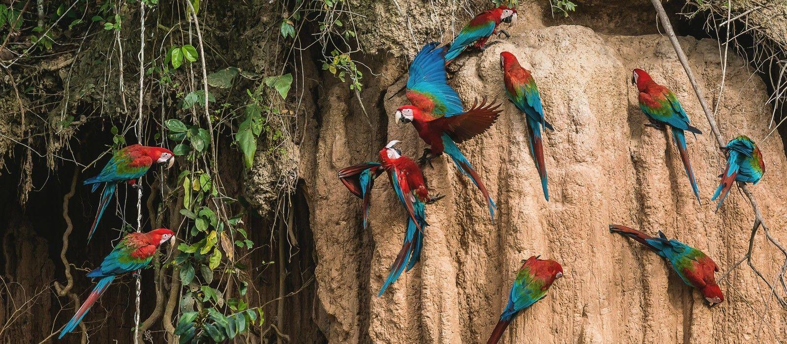 Peru: The Luxury Experience Tour Trip 6
