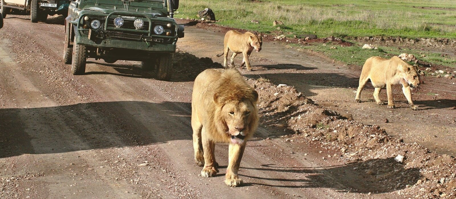 Exploring Eastern South Africa Tour Trip 1
