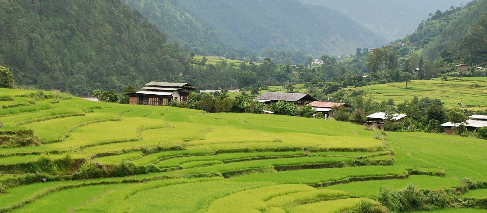 Nepalreise: Paläste, Tiger und Himalaya Urlaub 7