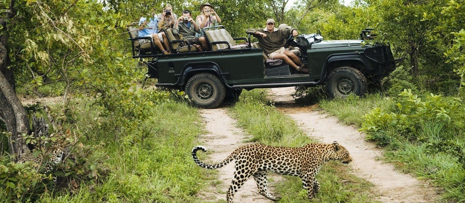 Kapstadt, Rovos Rails und Safari Urlaub 5