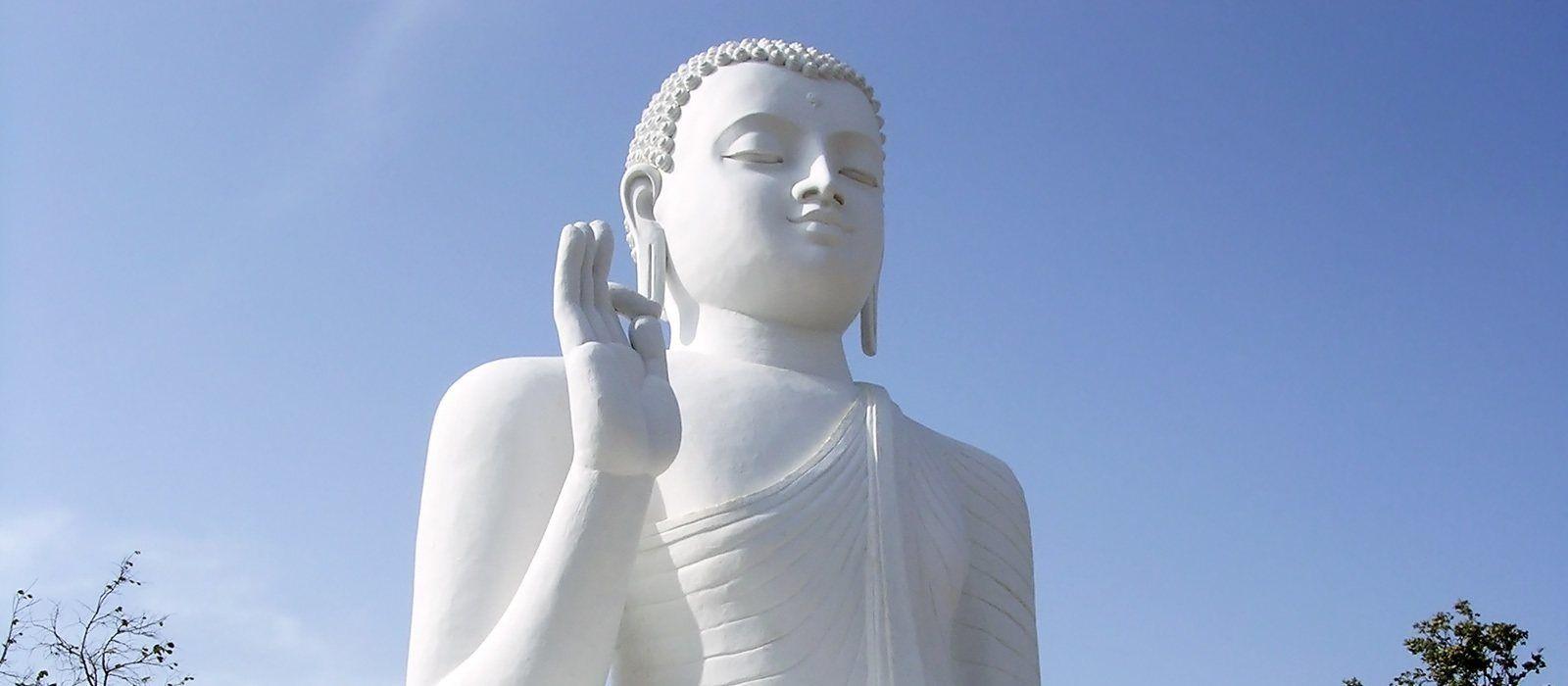 Simply Sri Lanka: Temples and Tea Tour Trip 7