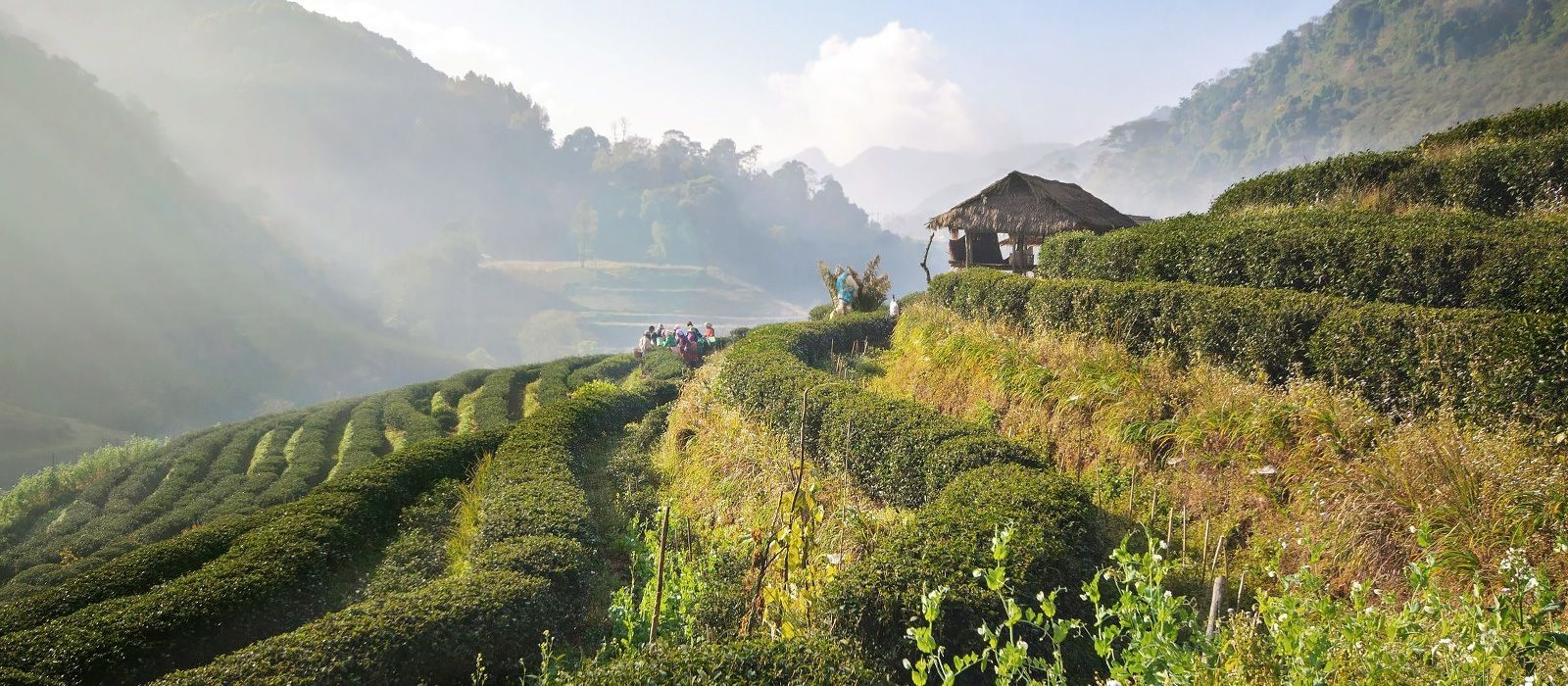 Thailand Rundreise: Bezaubernd & facettenreich Urlaub 1