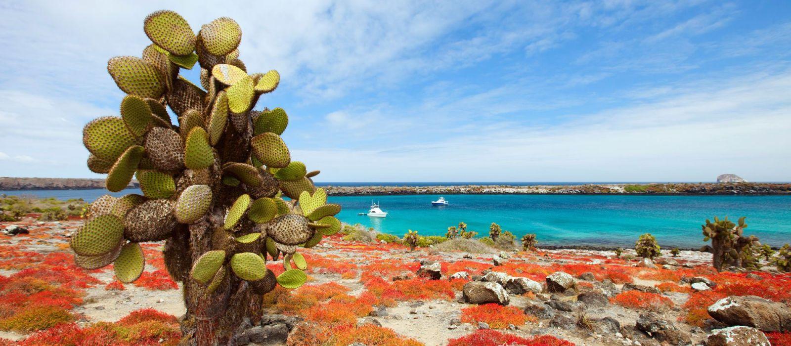 Destination Galapagos Ecuador/Galapagos